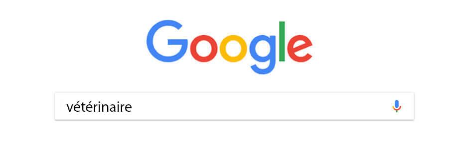 google-veterinaire-webforce-belgique